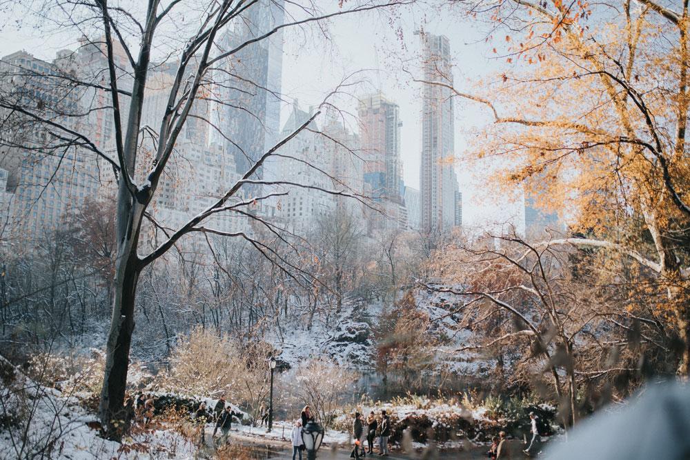ny-snow-2